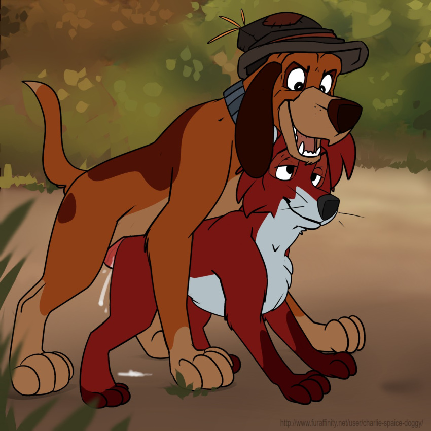 chief the fox and hound How old is nami from one piece